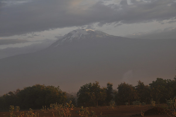 Kilimanjaro January 30 - February 4, 2013