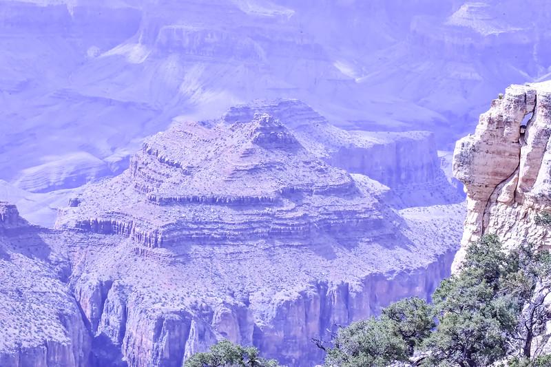 2019 Grand Canyon-279.jpg