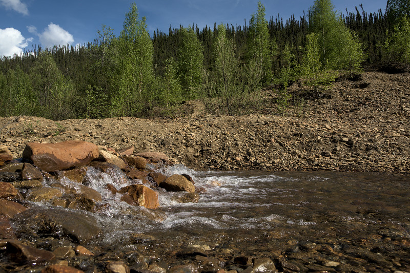 Pedro Creek
