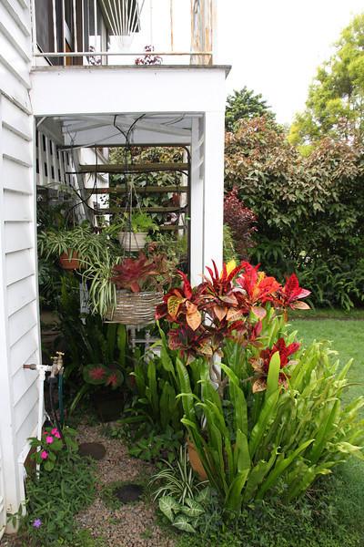 garden (94).jpg