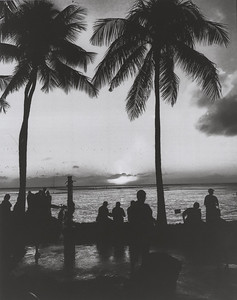 cyanotype and digital negative