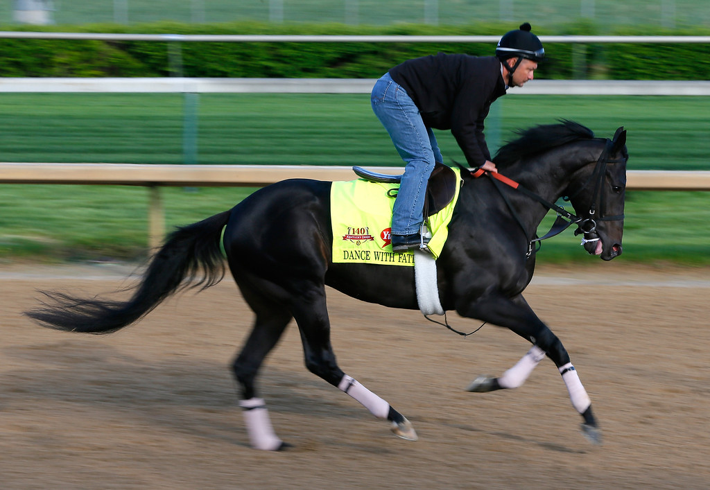 . Kentucky Derby contender Dance With Fate works out on the track during early morning workouts at Churchill Downs on May 1, 2014 in Louisville, Kentucky.  (Photo by Kevin C. Cox/Getty Images)