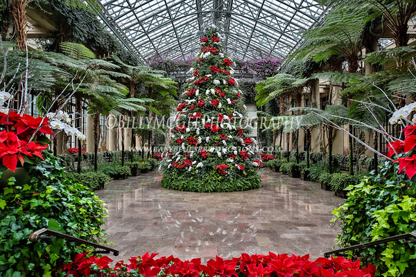 Longwood Gardens Christmas Theme - 02 Jan 2017