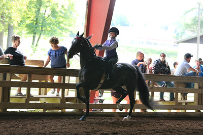 20B)W/T equitation 9&10 year olds