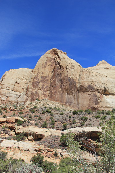 20170618-111 - Capitol Reef National Park - Hickman Bridge Trail.JPG