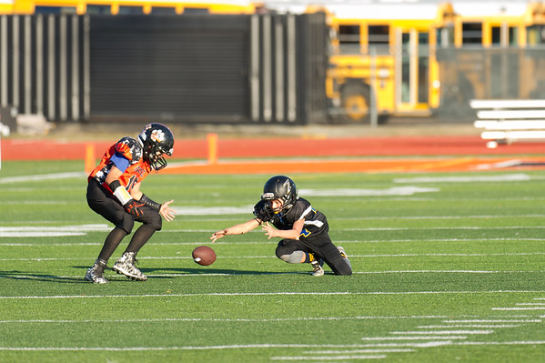 Roseville Jr Tigers Pee Wee vs Lincoln Championship 11-21-15