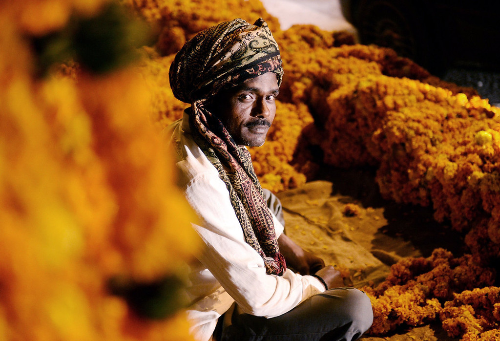 . A man sits among marigold flower  garlands for sale at an intersection in the early morning of November 3, 2013 in New Delhi on the day that Hindus in South Asia celebrate Diwali, one of the most important holidays in the Hindu calendar. The garlands are used by people to decorate their homes. ROBERTO SCHMIDT/AFP/Getty Images