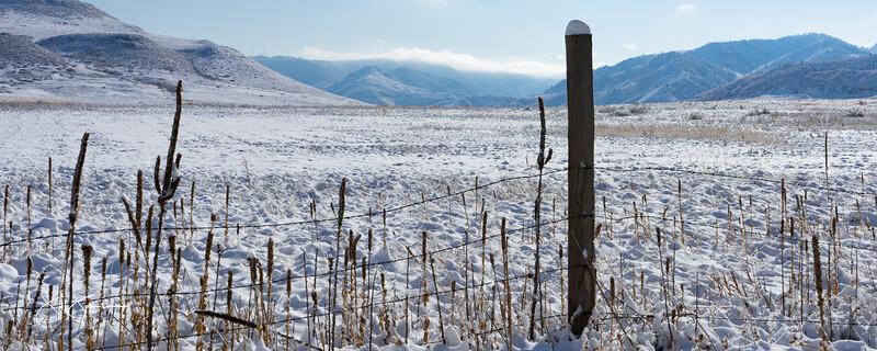 snow-01162.jpg