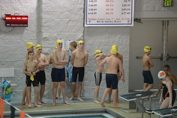 2014 Loyola Blakefield Swimming