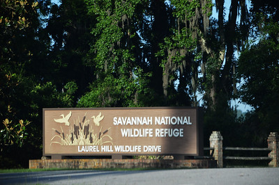 Savannah Wildlife Refuge, June 2019