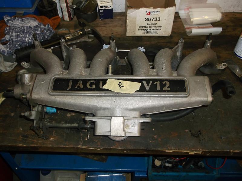 DSCF0043.JPG