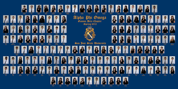 Chapter Composites