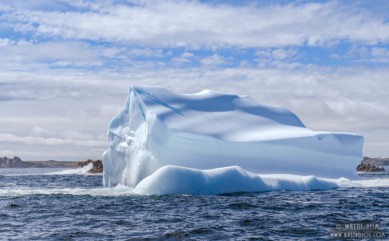 Iceberg 55    Photography by Wayne Heim