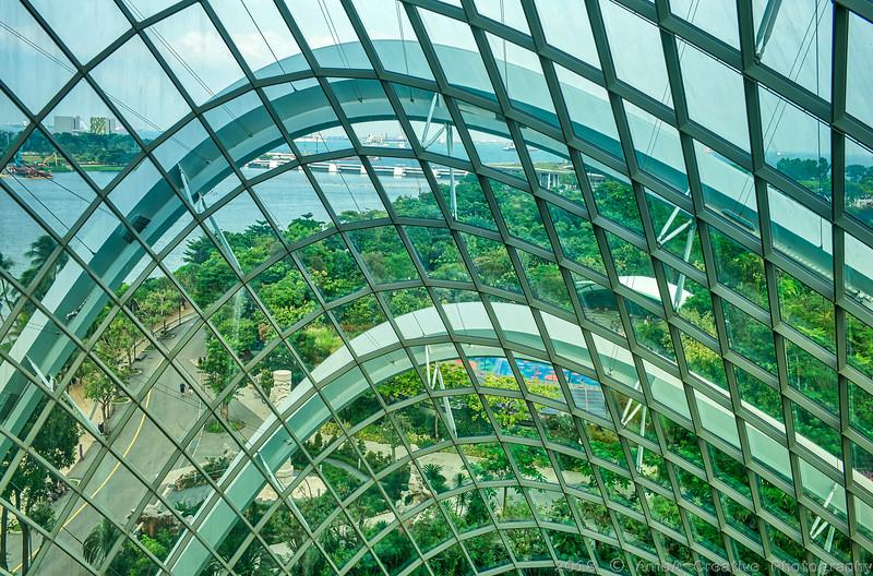 2018-07-18_FunWithFamily@GardensByTheBay_SingaporeSG_44-HDR.JPG
