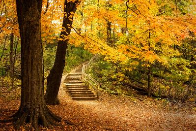 Autumn Stairs - $12