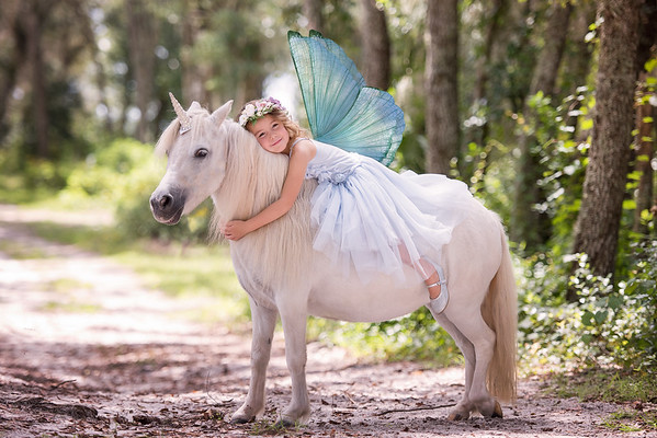 Donaldson Unicorn Sept 2018