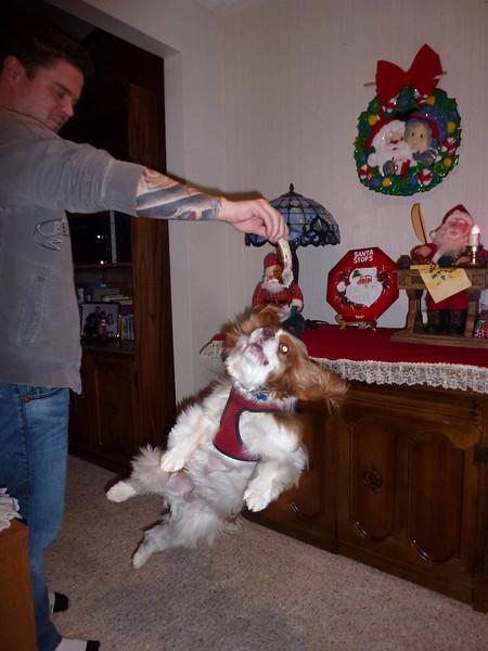 Christmas 2011 018.JPG