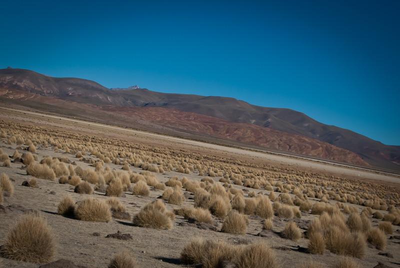 Tupiza to Uyuni 20120528 (43).jpg