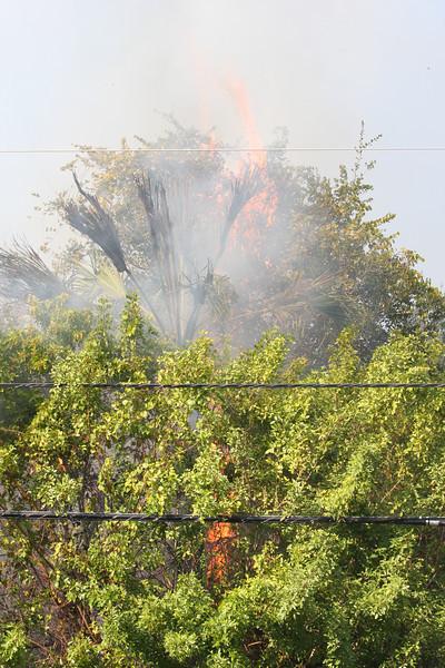 BRUSH FIRE SR 510 WABASSO
