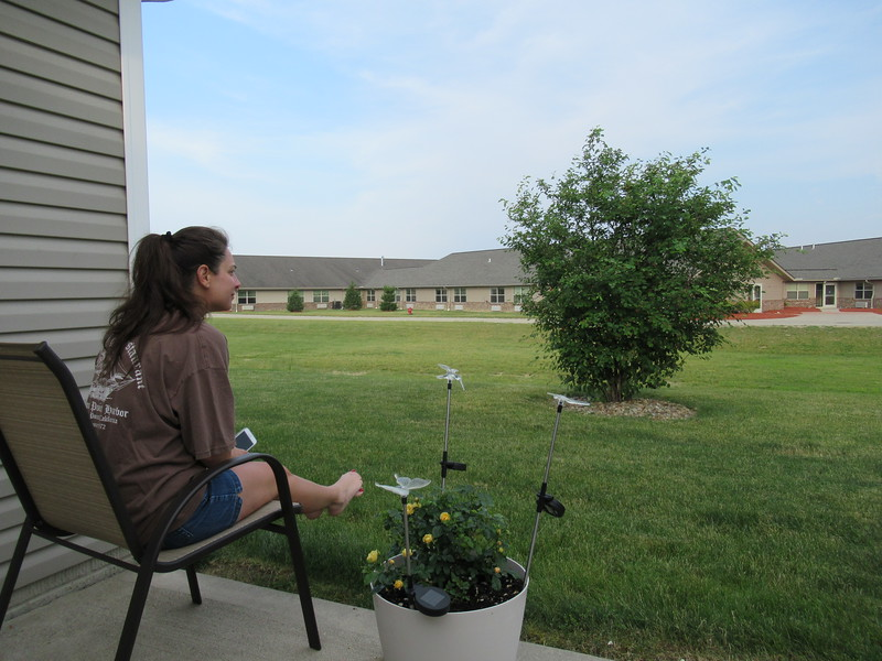 Diane watching the raccoons from our deck before they climbed that tree/bush that you see here.