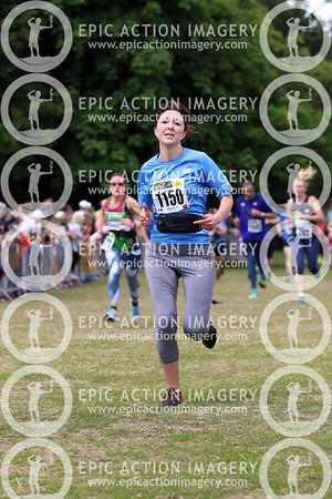 St Albans Half Marathon 2019 5a