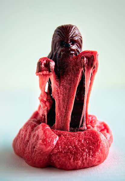 Chewy Chewie.jpg