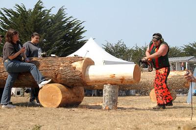 Logging Show Chain Saw
