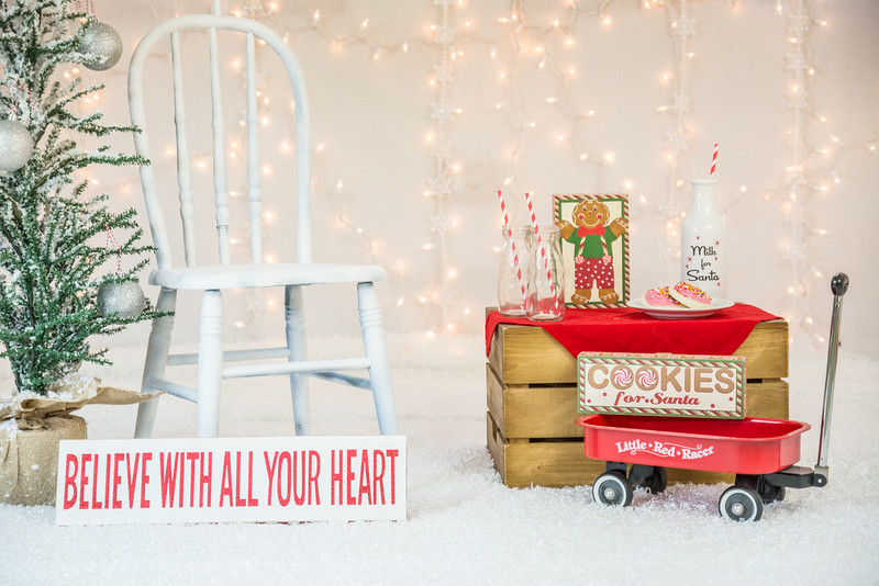 11-Christmas Mini Session Props