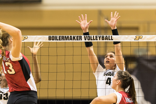 Purdue Volleyball vs Wisconsin 2015-11-28