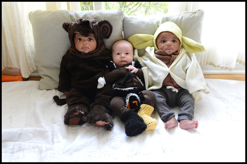 An Ewok, a frightened Pirate and Yoda.