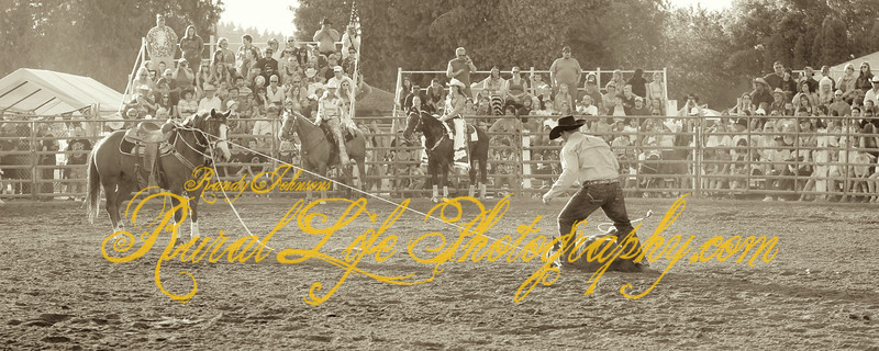 Vancouver Rodeo 2014