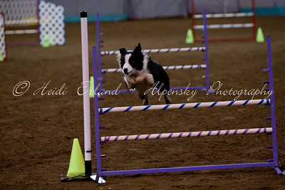 Top Dog CPE Oct 2011