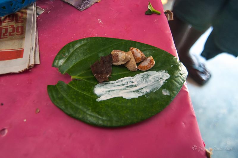 Sri-Lanka-Dambulla-Vesak-5117.jpg