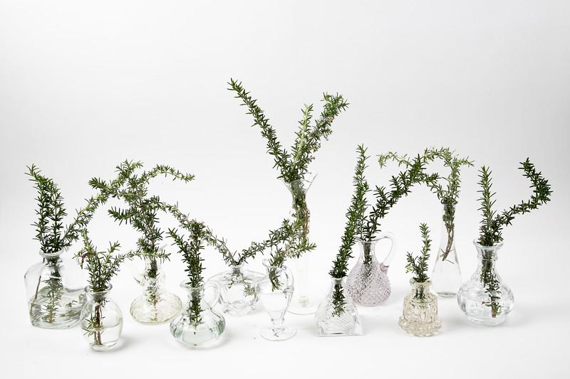 Vases-3012.jpg