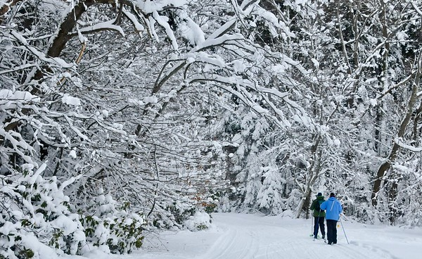 Nordic Ski Season