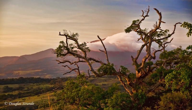 308-1744-Guanacaste-SunsetGlow--TopazStretched.jpg