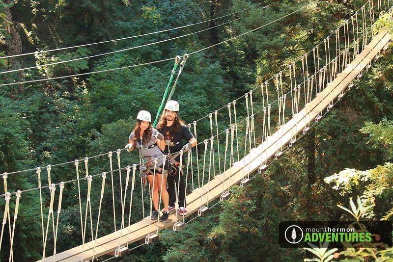 redwood_bridge_1473461761351.jpg