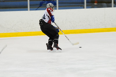 Game 3 - Iron River vs Livonia Blackhawks