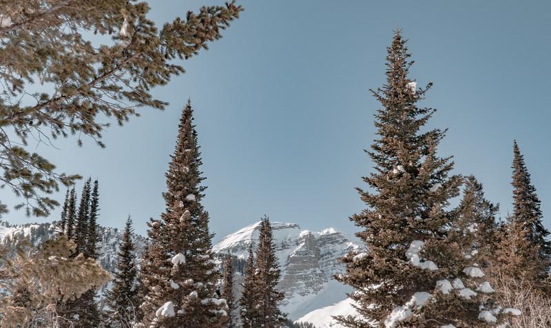 Sundance-28.jpg