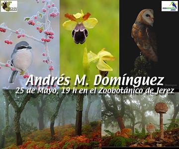 Fotografía Naturaleza Andres M Dominguez