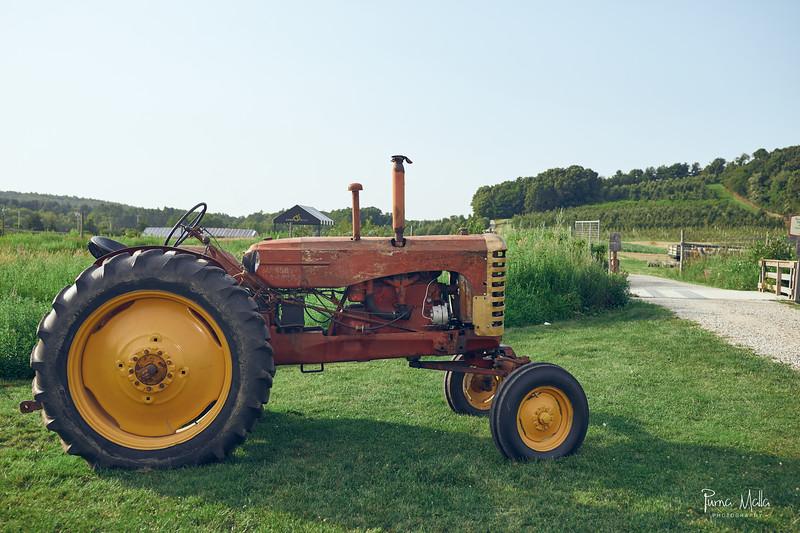 Cider Hill Farm 98.jpg