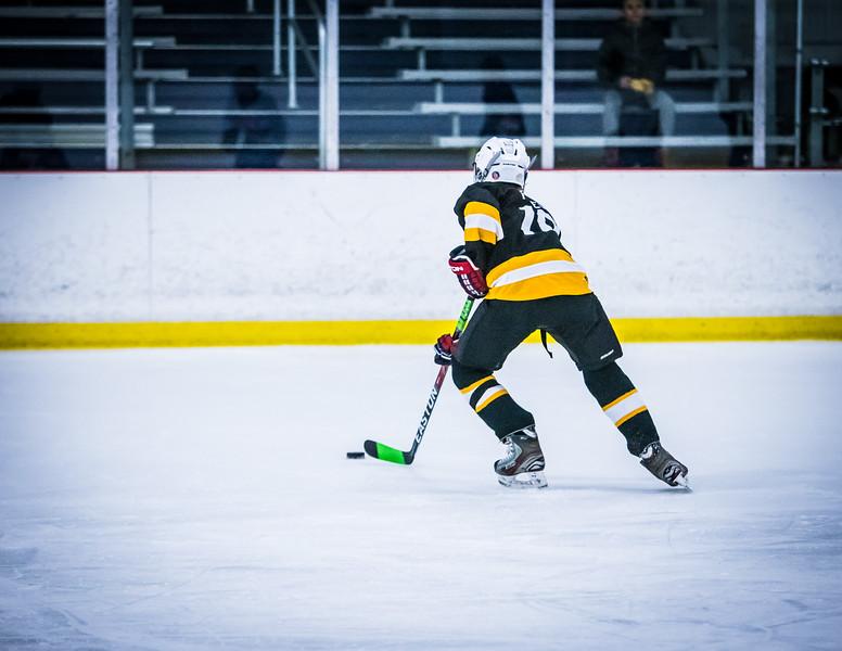 Bruins2-232.jpg