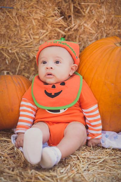 pumpkinpatrick-0001.jpg