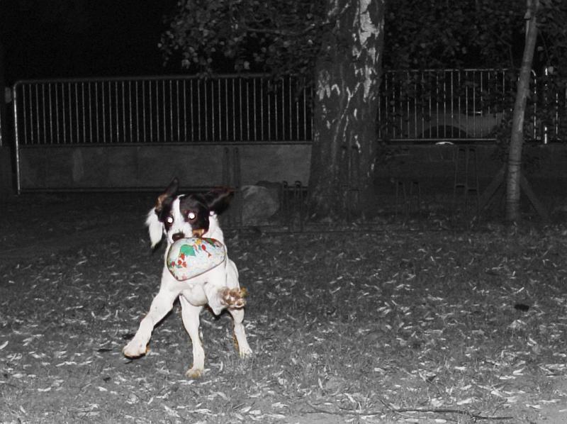 2004-09-22_02870.jpg