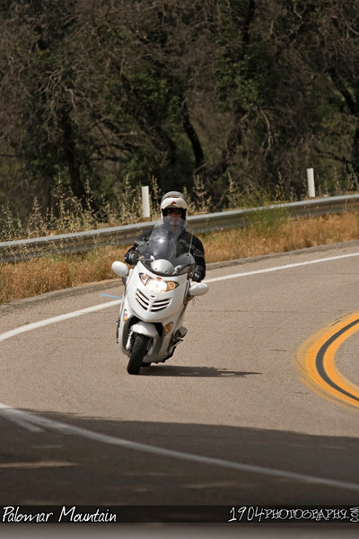 20090530_Palomar Mountain_0607.jpg