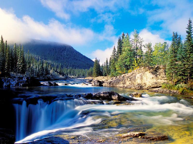 Nature33.jpg