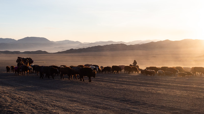 Mongolia - 2020 -7.jpg