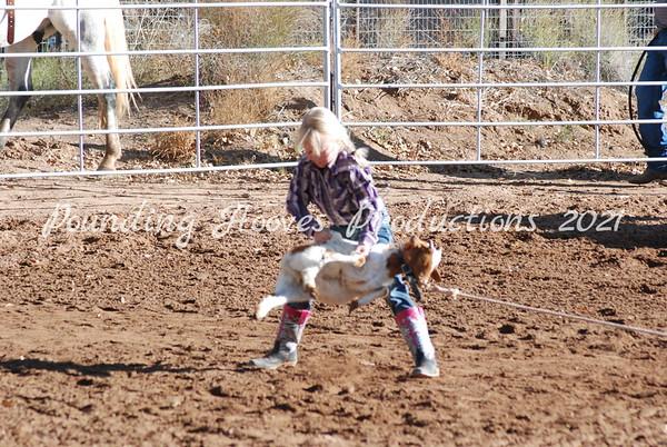 11-17-13 7/9 Girls Goats