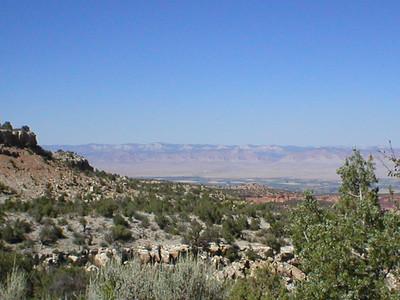 Gold Rush Grand Junction
