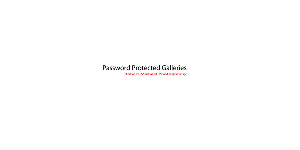 PASSWORD PROTECTED GALLERIES